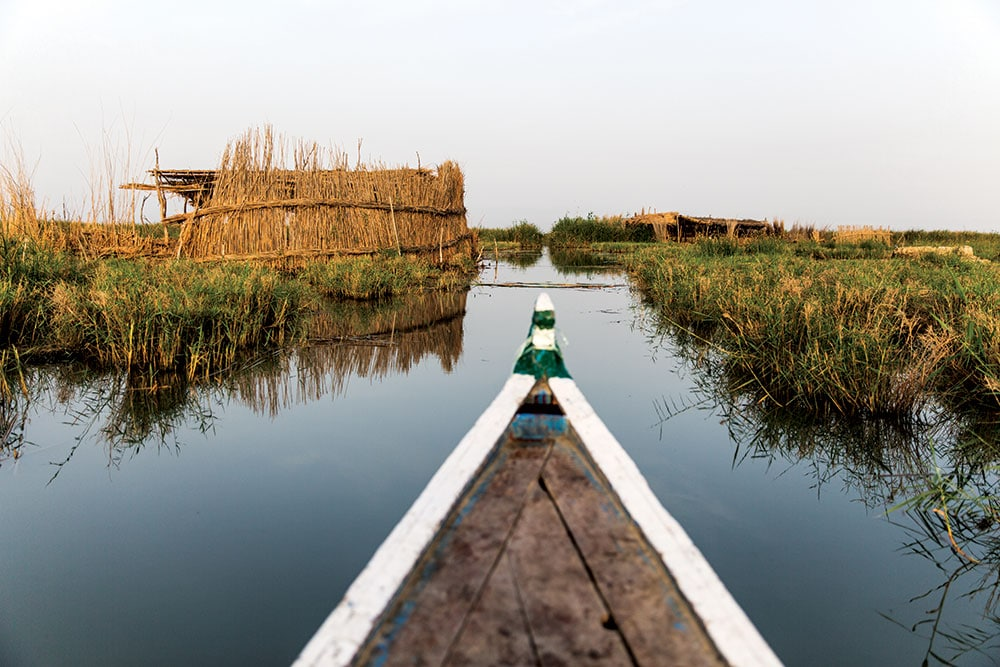 From the big mudhief meeting halls to these buffalo shelters, reeds provide the raw material for daily life in the marshes
